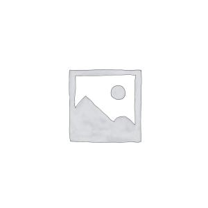 iPad (Tous Modèles)